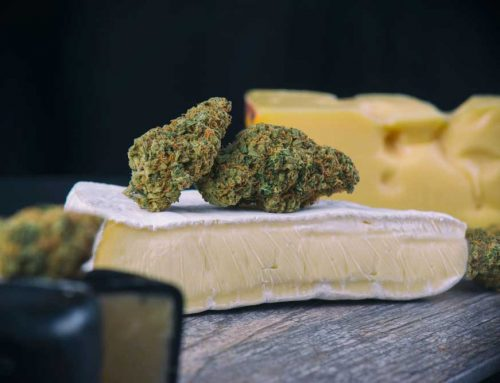 Simple Weed Cheese