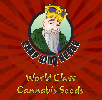 crop king seeds sidebar banner