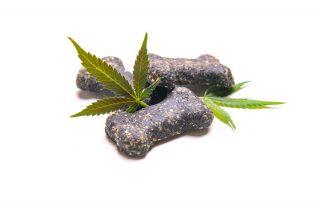 Cannabis Dog Treats