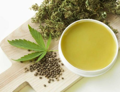Cannabis Salve Recipe